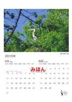 カレンダー5-6 2.jpg